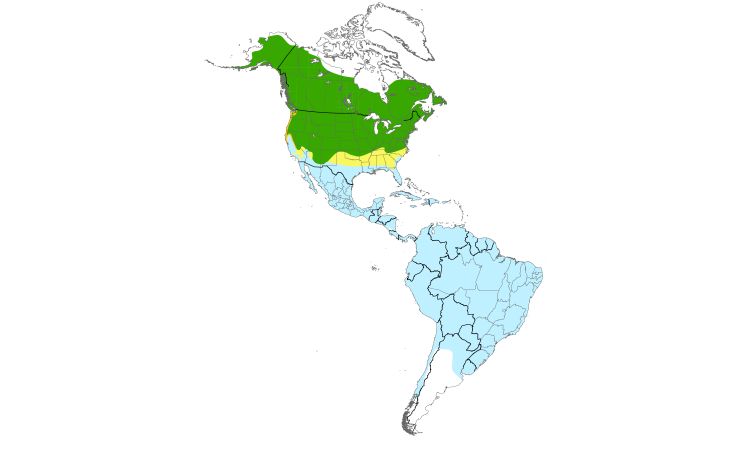 Range Map (Americas): Spotted Sandpiper