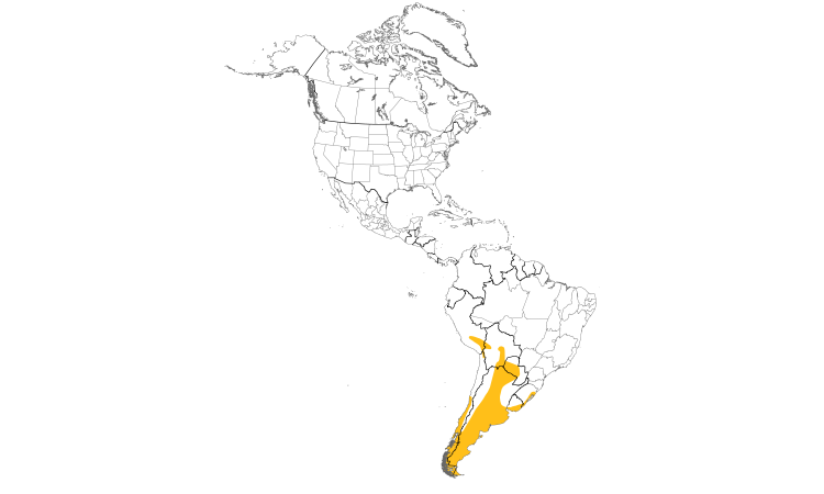 Range Map (Americas): Red Shoveler