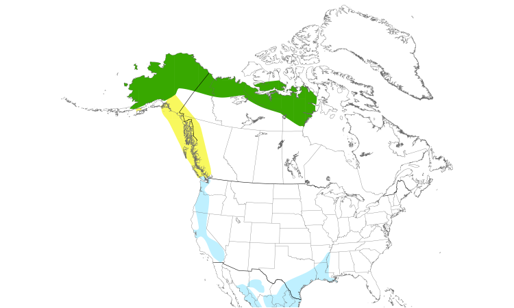 Range Map (North): Greater White-fronted Goose
