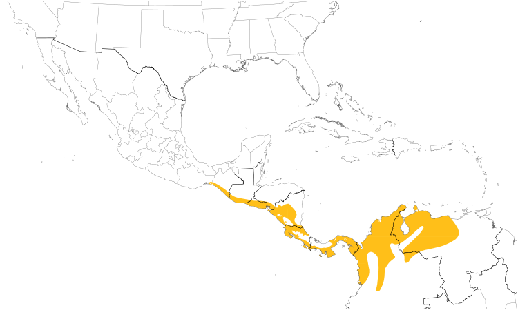 Range Map (Central): Orange-chinned Parakeet