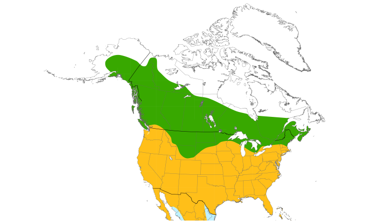 Range Map (North): Red-tailed Hawk