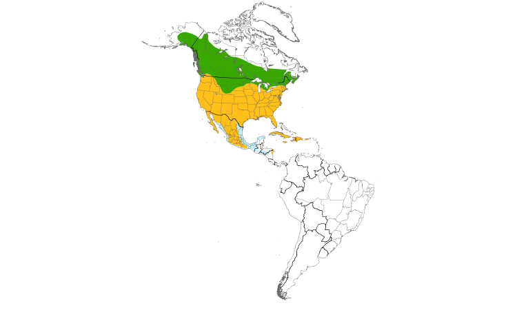 Range Map (Americas): Red-tailed Hawk