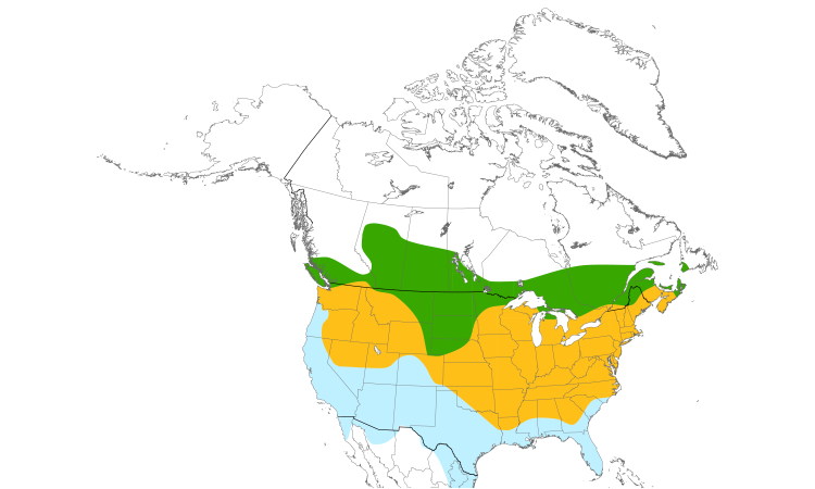 Range Map (North): American Goldfinch