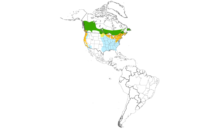 Range Map (Americas): Purple Finch