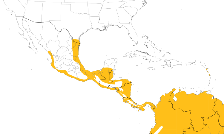 Range Map (Central): Ringed Kingfisher