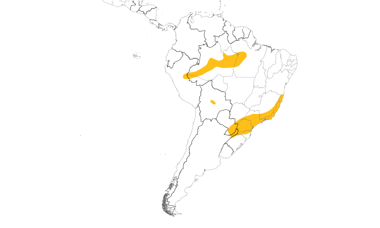 Range Map (South): Three-striped Flycatcher