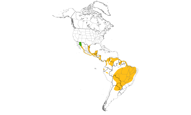 Range Map (Americas): Black-bellied Whistling-Duck