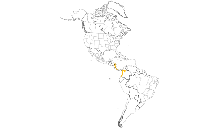 Range Map (Americas): Streak-chested Antpitta