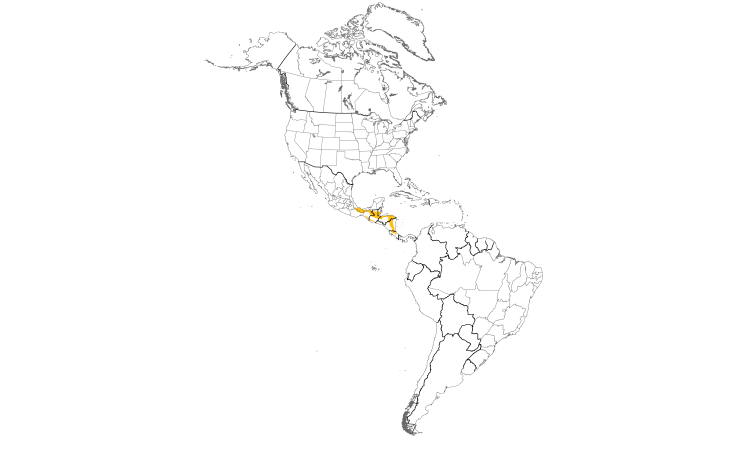 Range Map (Americas): Black-crested Coquette