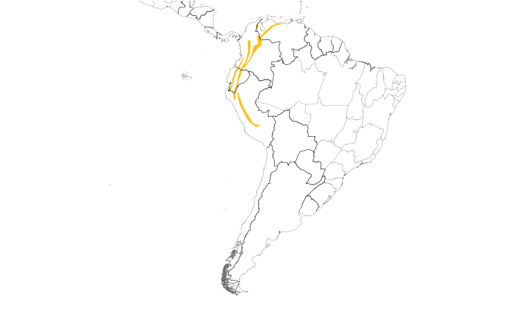 Range Map (South): Flavescent Flycatcher
