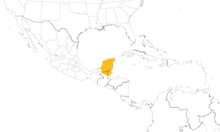 Range Map (Central): Yucatan Poorwill