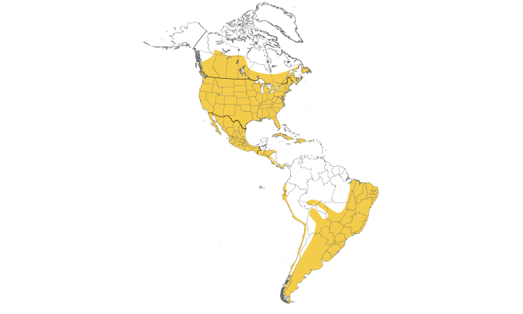 Range Map (Americas): House Sparrow