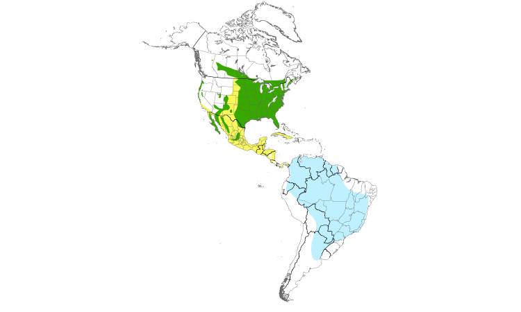 Range Map (Americas): Purple Martin