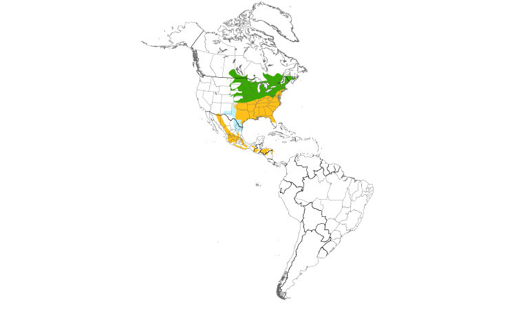 Range Map (Americas): Eastern Bluebird