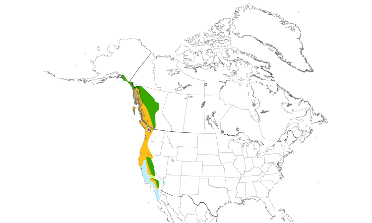 Range Map (North): Red-breasted Sapsucker
