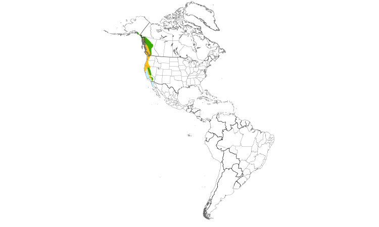 Range Map (Americas): Red-breasted Sapsucker