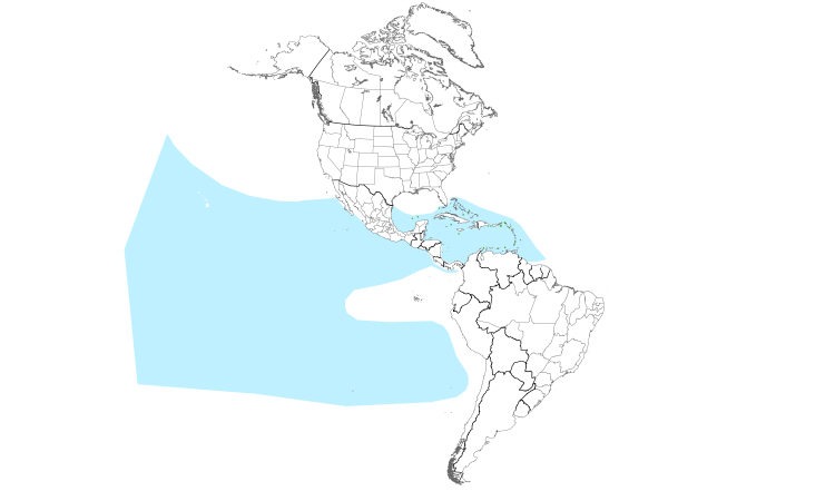 Range Map (Americas): Masked Booby