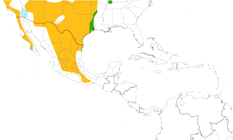 Range Map (Central): Bewick's Wren