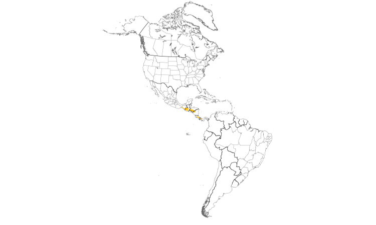 Range Map (Americas): Mountain Thrush