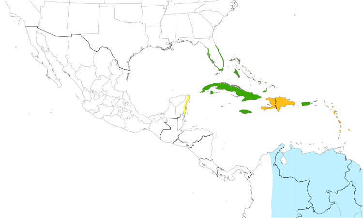 Range Map (Central): Black-whiskered Vireo