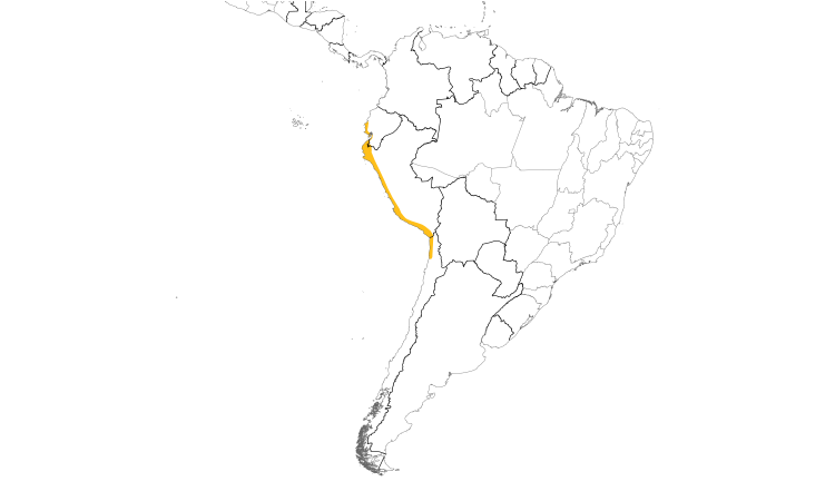Range Map (South): White-winged Dove